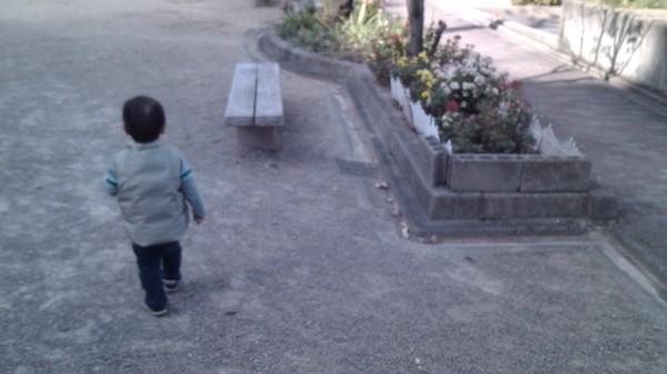 写真 公園 子Y 20141124_1327281 w600