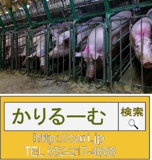 肉が原因?!畜産が深刻な水不足を引き起こすワケ
